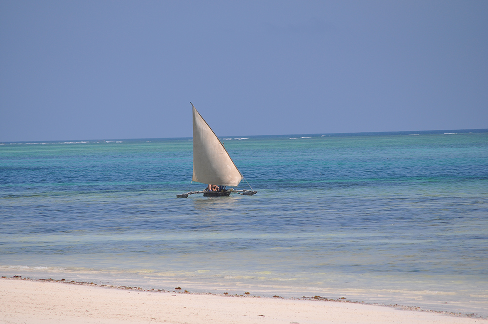 Pico Communications -  - Zanzibar