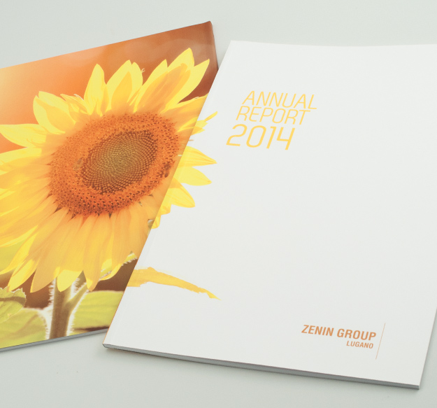 Pico Communications - Lemanik SA (CH) - Rapporto esercizio annuale 2014