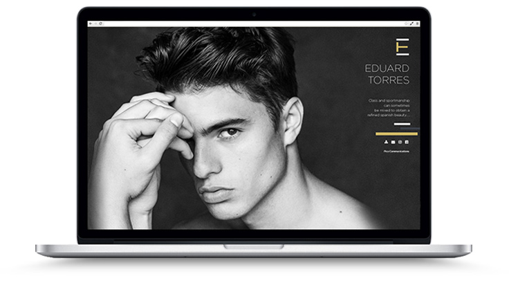 Pico Communications - Eduard Torres (ES) - Web site