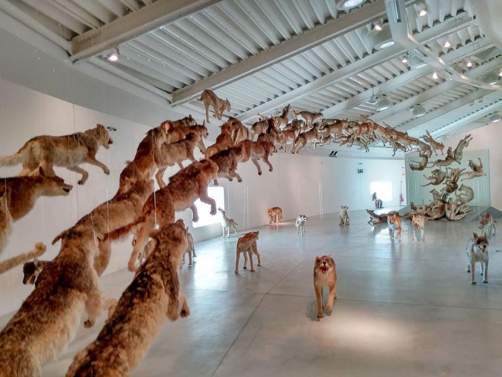 Pico Communications -  - Museo Pecci 2016 - Prato