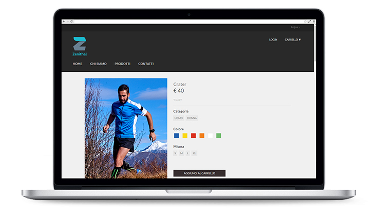 Pico Communications - Zenithal (IT) - Website