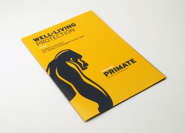 Pico Communications - Primate (IT) - Flyer